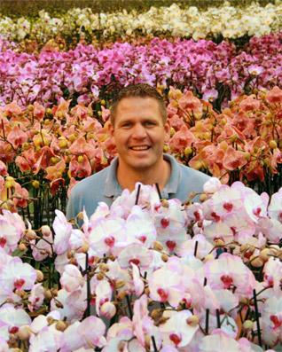 купить цветы цена