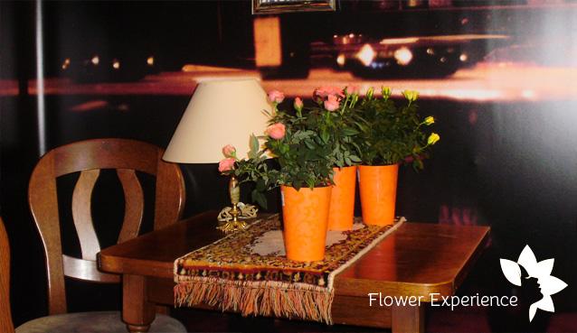 голландские розы купить оптом