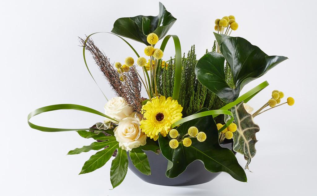 производство декоративной зелени