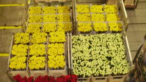 цветочный аукцион
