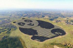 Солнечная панда