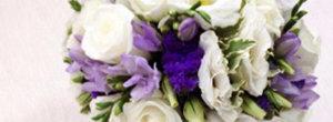Цветы Владивостока
