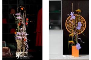 ванды и хризантемы