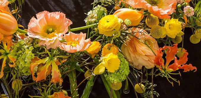 флористические амбассадоры