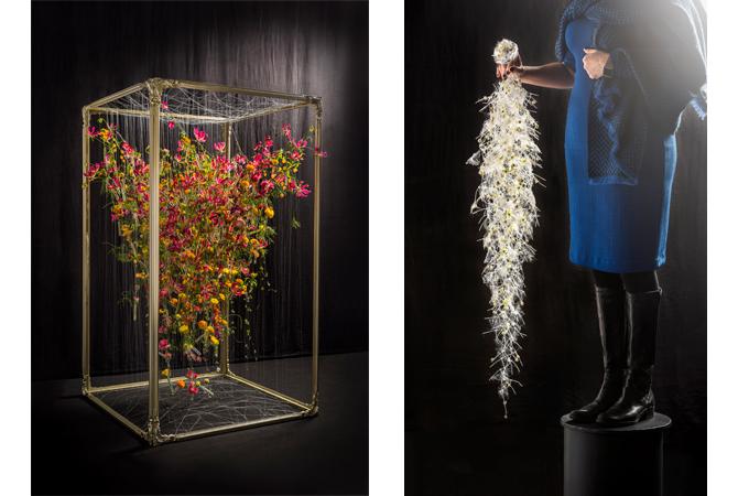 цветочные амбассадоры