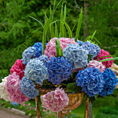 О Серебрянном веке и цветах
